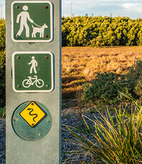 safety-wildlife-snake-signs-grass